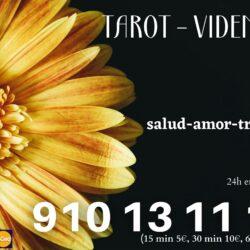 GABINETE DE VIDENCIA 910131116 [15 min 5€, 30 min 10€, 60 min 20€]