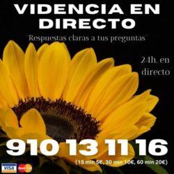 VIDENTE NATURAL-TODA LA VERDAD 910131116