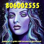 806002555 (8)