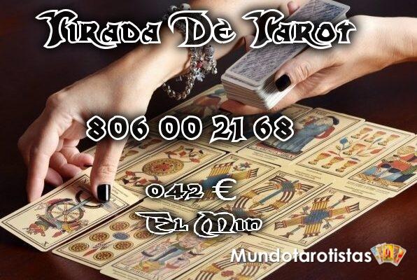 8356_tiradastarot